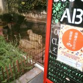 5/14(日)下北沢「保護犬のための譲渡会in DOG CAFE ABC」に参加します