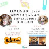 5/14(日)「OMUSUBI Live 保護犬とカフェしよう」詳細のご案内